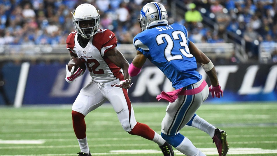 Cardinals vs Lions - NFL Package in Glendale - Kimmyz on Greenway